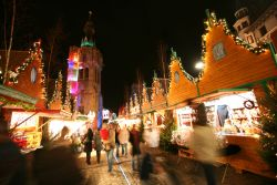 Christmas Holiday Ideas in France