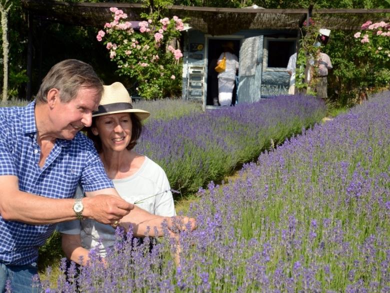 Lavender Cottage - Cottage Holiday Rental, in Lherm, Lot, France
